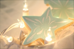 Star Cookie Favor KRINGLE