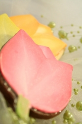 FLOWER TARA Tulip Cookie Favor